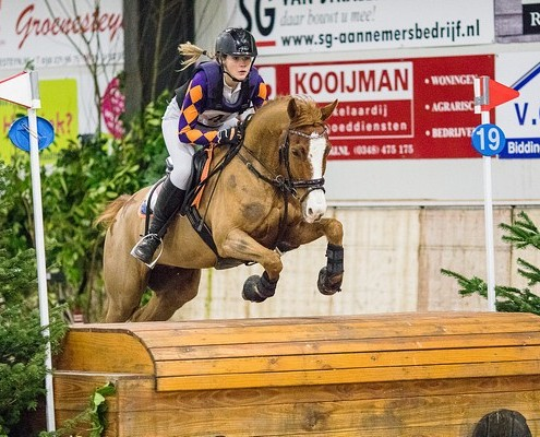 Rider: Shannon BakkerNationality: The NetherlandsHorse: KoenFather: King KadanzEvent: Indoor Eventing UtrechtDiscipline: Indoor SGWClass: Z pony'sLocation: De MeernCountry: The NetherlandsDate:6 February 2016